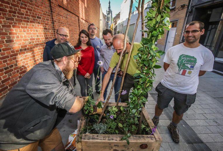 Wannes Ureel van bakfietstuinmansbedrijf Hovekes plaatste bloembakken in de Lange-Brugstraat.