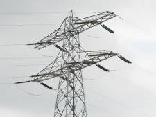 Gevaarlijk hoge bomen bij hoogspanningslijn in Harderbos tussen Dronten en Zeewolde moeten omver