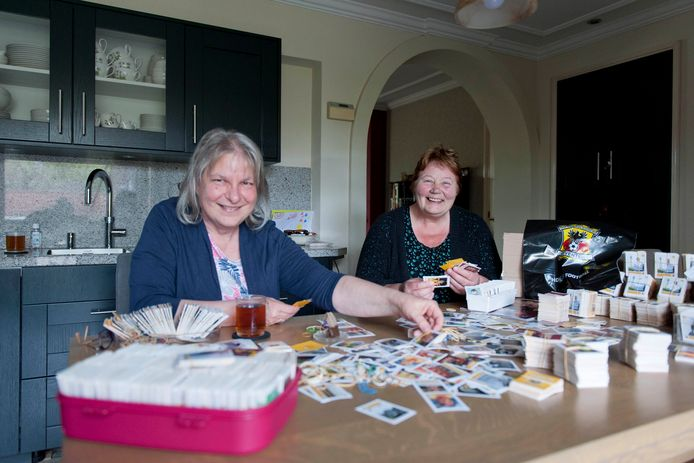 Els Luesink (rechts) en haar buurvrouw Leonne Bogaert zijn samen met drie vriendinnen druk bezig om aan hun keukentafels de honderden voetbalplaatjes uit te zoeken.