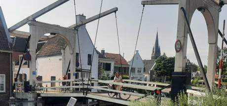 Van Slot Zuylen tot Amerikaanse plantsoorten: dit is hoeveel Brooklyn je terugziet in Breukelen