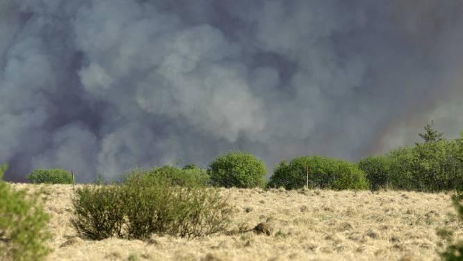 Grootste brand ooit op Hoge Venen (deels) aangestoken