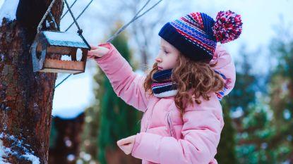 Natuurpunt start winteractie voor vogels