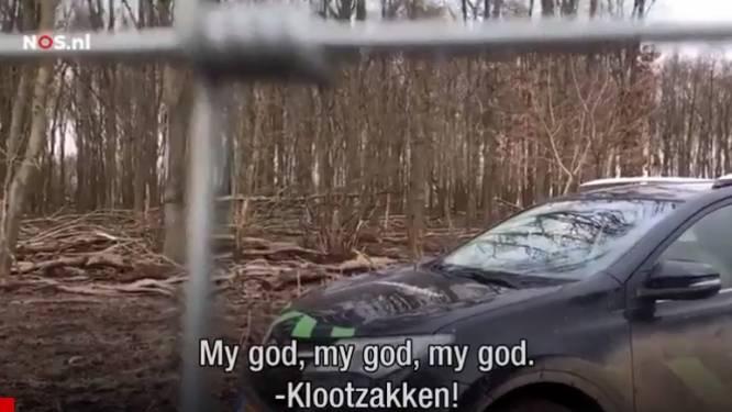 Actievoerders schelden boswachters de huid vol na afschieten edelhert