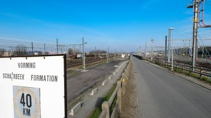 Haven naar rechter tegen verdwijnen van vrachtspoor