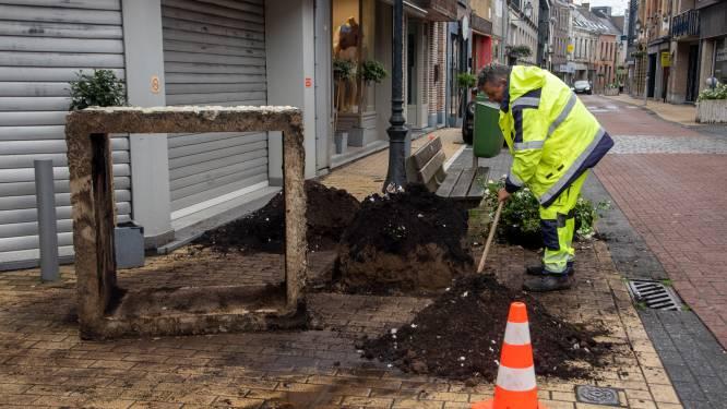 """Duizend kilo zware bloembak gekanteld: """"Vermoedelijk door vrachtwagen"""""""