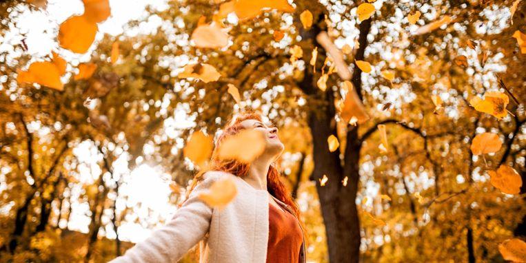 herfstbladeren-drogen.jpg