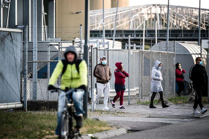Arbeidsmigranten bij het slachthuis.