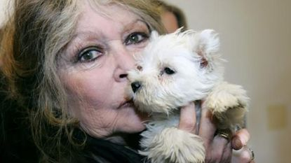 """""""Je ziet het aan zijn kille blik"""": Brigitte Bardot vraagt dierenvrienden niet op Macron te stemmen"""