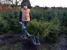 Stormloop uit hele land op kerstbomen van zieke Henk in Sprundel: 'Dit had ik niet verwacht'