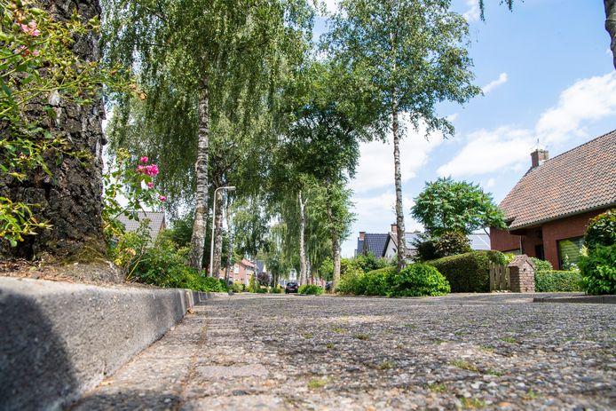 Hardenberg haalt groot onderhoud plus een facelift naar voren voor de Johan Clemmestraat in Mariënberg. Daarbij worden ook duurzame maatregelen genomen op gebied van groen, klimaat en toegankelijkheid voor iedereen.