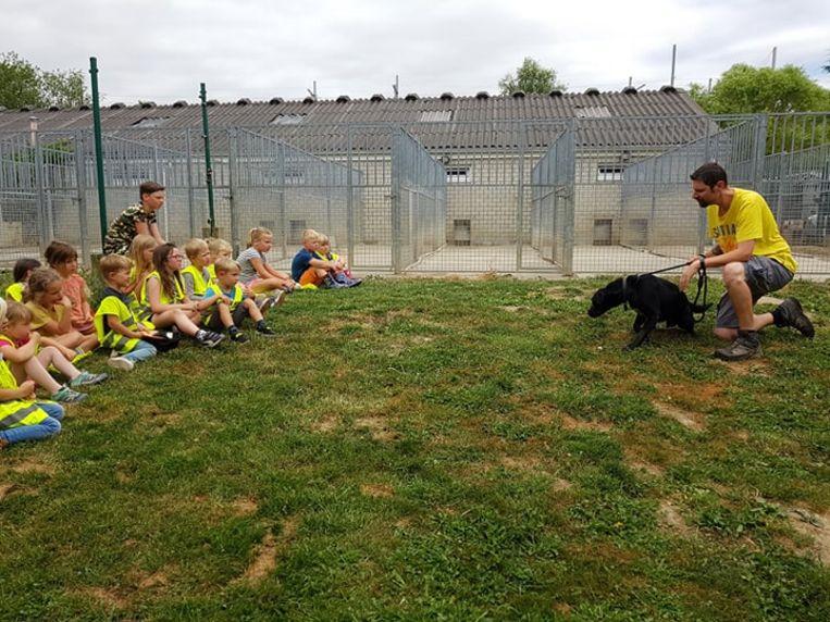 De kinderen van het Beleefhoeve Pantouf gingen op bezoek in het Tiense Dierenasiel.