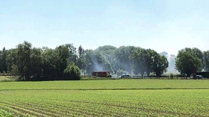 Grasbrandje in Grote Zadelweg snel onder controle