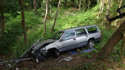 Wagen belandt in bosjes naast snelweg