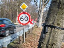 VVN en omwonenden 'dodenweg' Apeldoorn pleiten voor 2 kilometer lange proeftuin