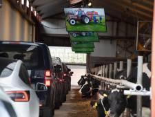 'Drive-through condoleance' door de stal: indrukwekkend afscheid tussen Jacobs koeien