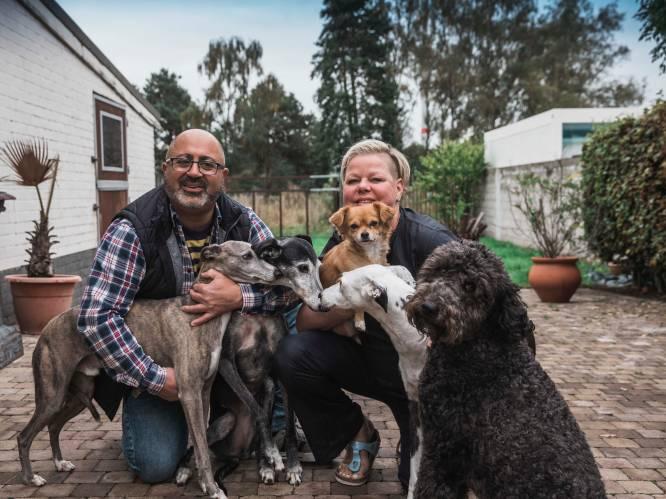 """27 jaar vriendschap en twee huwelijken later hebben Miet en Raf uit Genk elkaar dan toch gevonden: """"Echte soulmates laten elkaar nooit los"""""""
