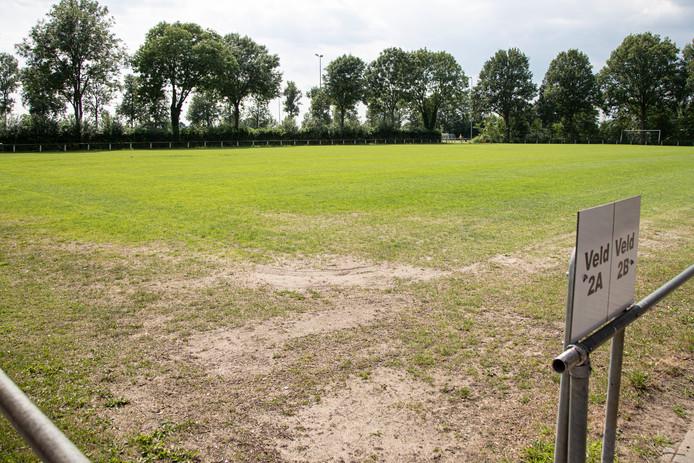 Het veld van Wijhe '92 vorig jaar. Na de ervaringen met dorre voetbalvelden zijn clubs in de regio nu extra waakzaam.