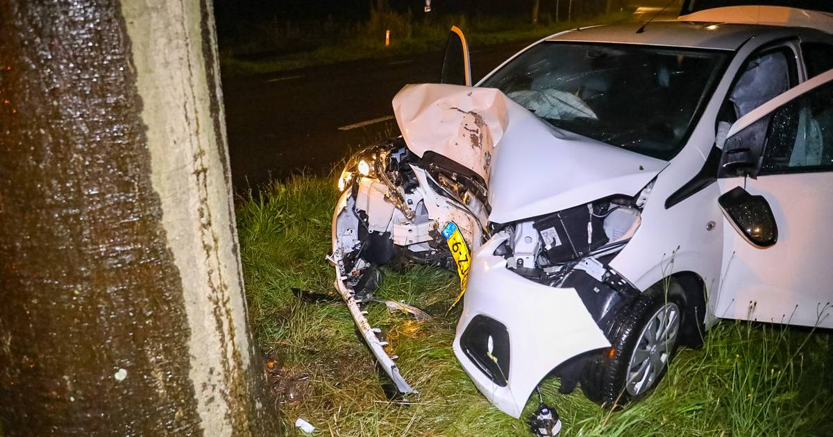 Automobilist zwaargewond na botsing tegen boom in Uddel.