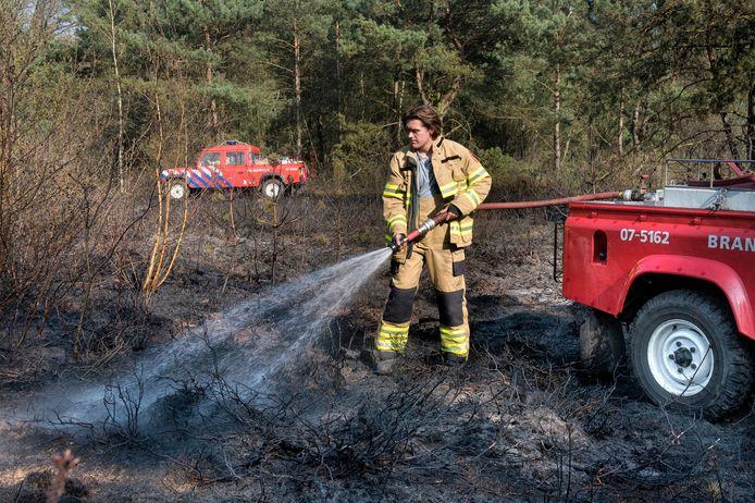 Bosbrand naast de Schelmseweg, aan de rand van Arnhem.