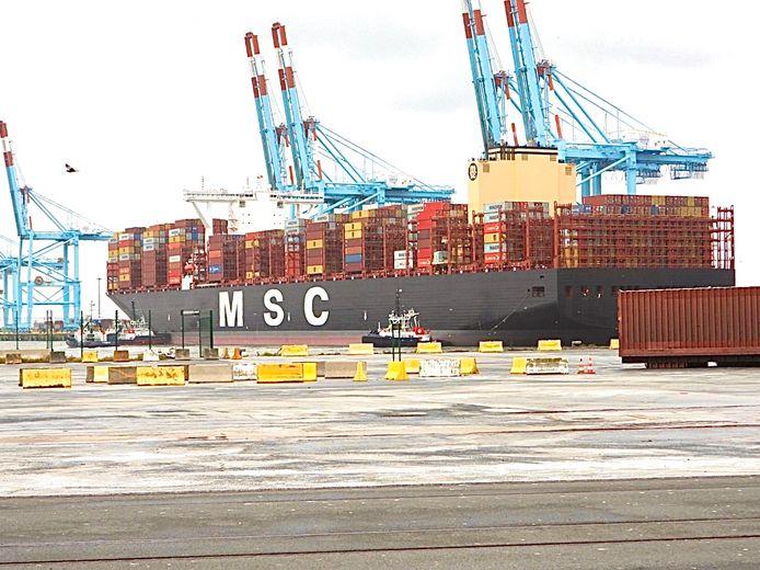 MSC Amelia ligt aangemeerd in de haven van Zeebrugge.