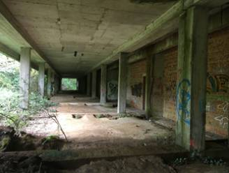 """Provincie breidt Vrijbroekpark uit met spookhotel: """"Niet afbreken, wel conserveren"""""""