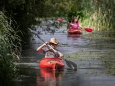 Het raadsel van de Dommel blijft bestaan; geen verklaring voor plantensterfte, maar aan de kano's lag het zéker niet