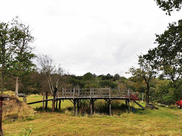 """Pont en bois, connu à l'origine sous le nom de Posingford Bridge, construit en 1907 dans la forêt d'Ashdown et qui a inspiré l'auteur de Winnie l'ourson A.A. Milne pour écrire les livres après une partie de """"Poohsticks"""" avec son fils Christoper."""