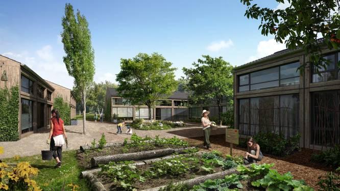Altijd al in een experimentele woning willen wonen? Living Lab 040 zoekt bewoners voor Buurtschap Te Veld in Eindhoven