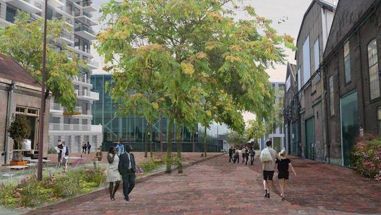 Woningcorporatie Stadgenoot begint binnenkort met de bouw op Oostenburg. Beeld -