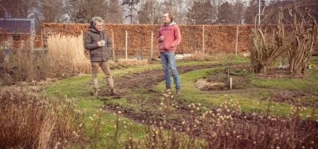Steeds meer mensen willen zelf groente oogsten: De Nieuwe Ronde in Wageningen zoekt extra grond