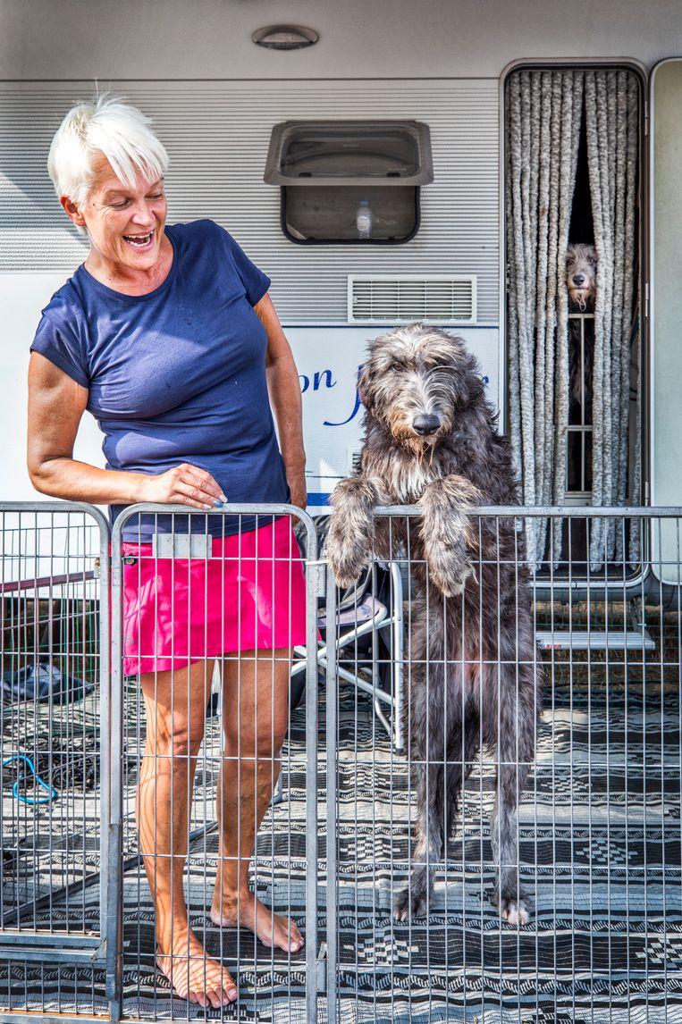 Susanna Grkman-Hiljunen met een van haar scottisch deerhounds.   Beeld Raymond Rutting / de Volkskrant