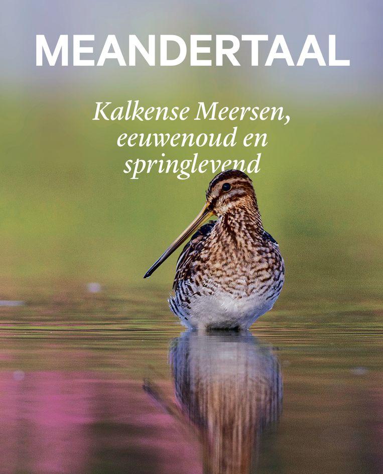 Cover boek Kalkense Meersen