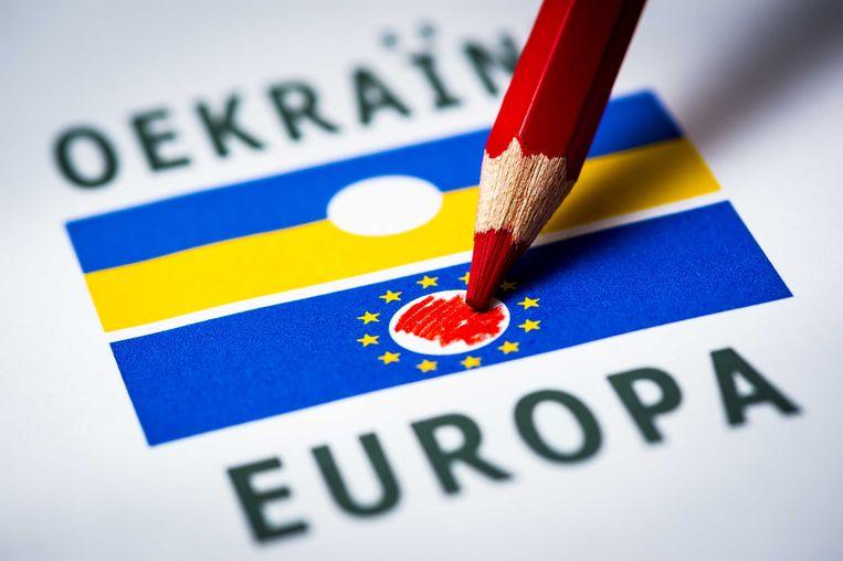 Het Oekraïne-referendum. Beeld ANP XTRA