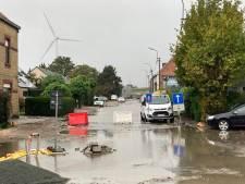 Telefoon bij Gentse brandweer staat roodgloeiend: Langerbruggestraat onder water, boom aan Lievekaai geknakt