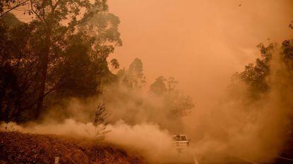 """Eén dode en zes vermisten na """"verschrikkelijke dag"""" van Australische bosbranden"""