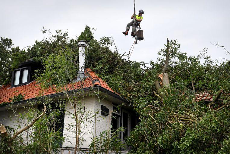 Ravage in Leersum: door omgewaaide bomen bedolven huizen. Beeld Marcel van den Bergh