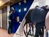 Rel in Middelburgse gevangenis: vrouwen met beha mogen niet naar binnen (ook cipiers niet)