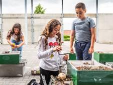 Leerlingen bloeien op door klusklas: 'Ze krijgen het gevoel dat zij er ook toe doen'