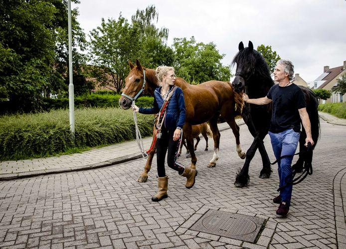 Bewoners in het Limburse Meerssen verlaten hun gebied met de paarden, nadat een dijk is doorgebroken (archief).