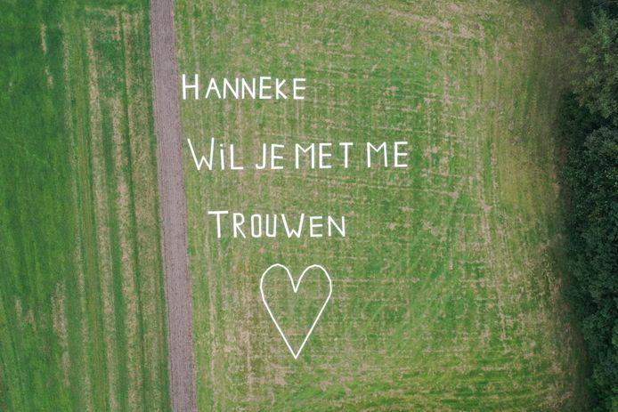 Met witte platen in een weiland bracht Marco Bergsma zijn huwelijksaanzoek onder de ogen van zijn vriendin Hanneke Ruijvekamp.