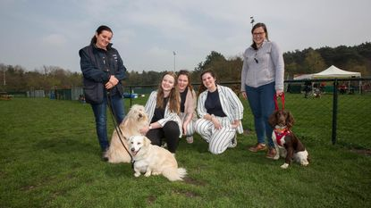 Studenten PXL zoeken thuis voor asielhonden en -katten met dag voor dierenplezier