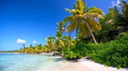 Beste vakantiejob ooit? Reis met je beste vriend de wereld rond en verdien ruim 3.000 euro per maand