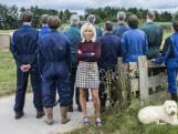 Het is weer tijd voor BZV: zo gaat het met de boeren van vorig seizoen