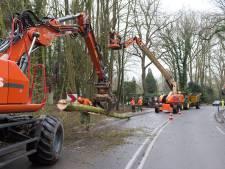 Provincie dubt over aanpak Heerderweg