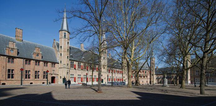 In de nabije toekomst geen bestuurlijk centrum meer? foto Lex van Lieshout/ANP