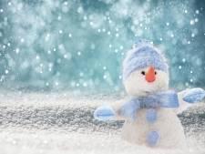 Wie maakt de mooiste sneeuwpop van Epe?