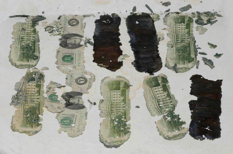 De biljetten van twintig dollar die een jongen in 1980 vond in de Columbia-rivier. Het bleek een deel van het losgeld te zijn. Beeld reuters