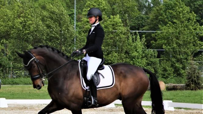 Ruim 100 paarden naar Duvals Zeeland Dressage Cup