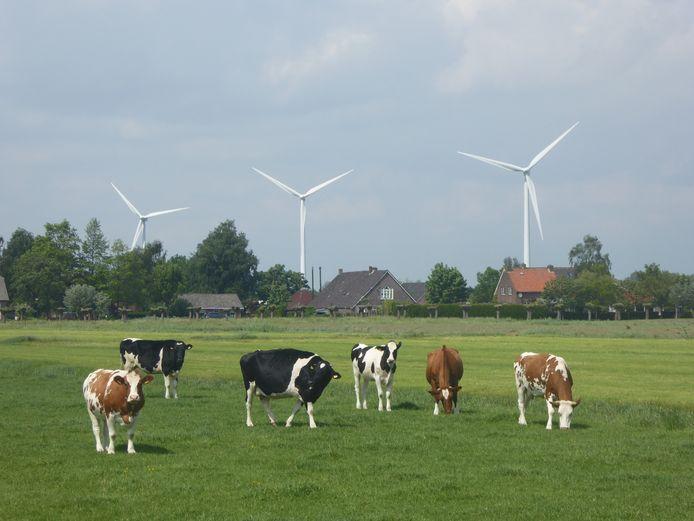 Tegenwind Hellendoorn & Raalte wil voorkomen dat er hoge windturbines in dit grensgebied van deze buurgemeenten worden geplaatst.