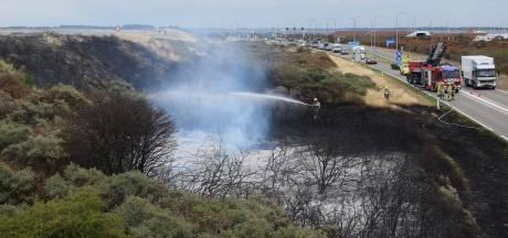 Burgemeesters doen dringende oproep om voorzichtig te zijn: 'Mens vaak veroorzaker natuurbrand'